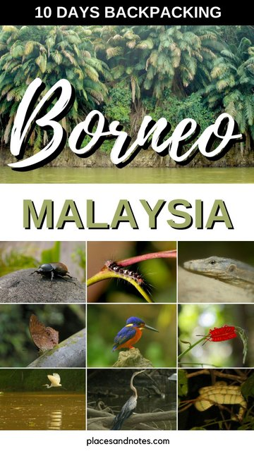 Borneo Malaysia 10 days backpacking things to see and do