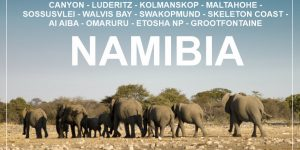 NAMIBIA: 3 week round road trip with a rented car