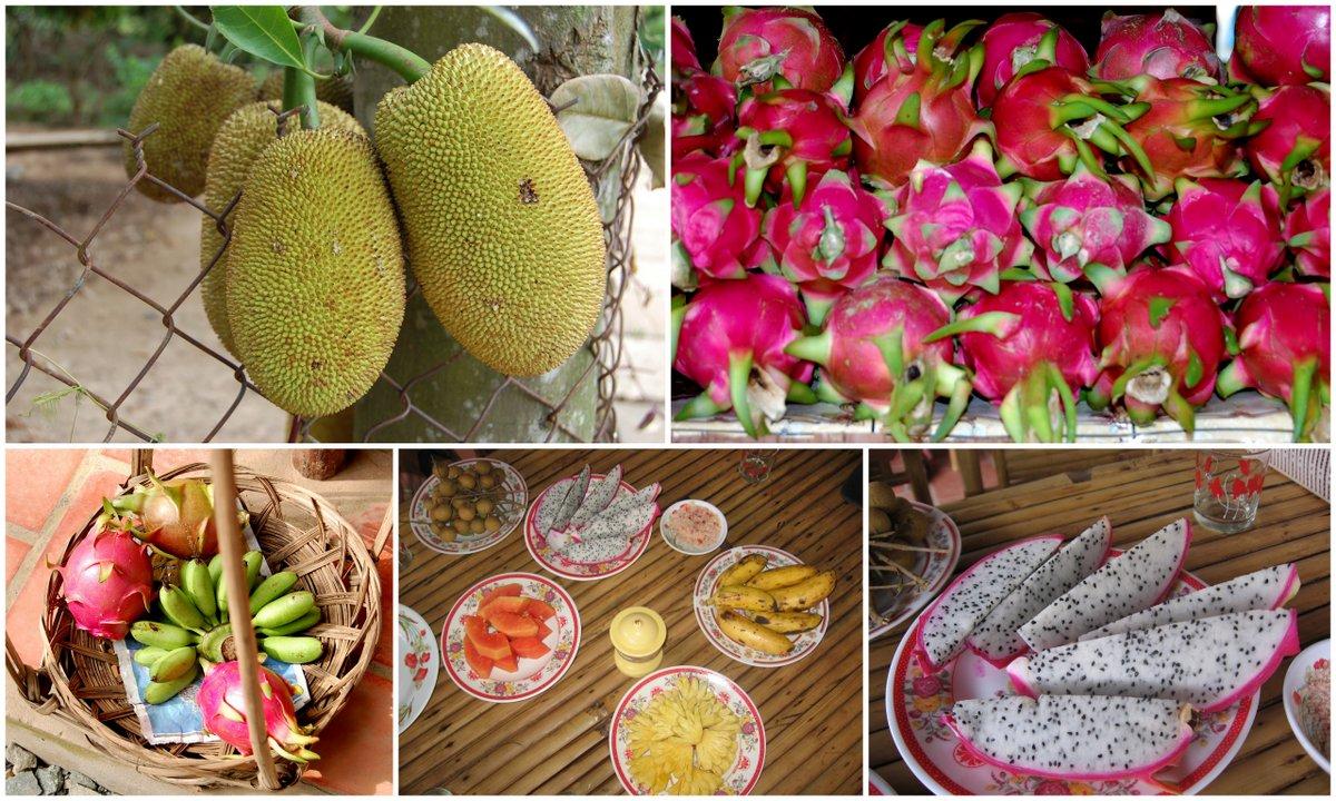 vietnam food_fruits