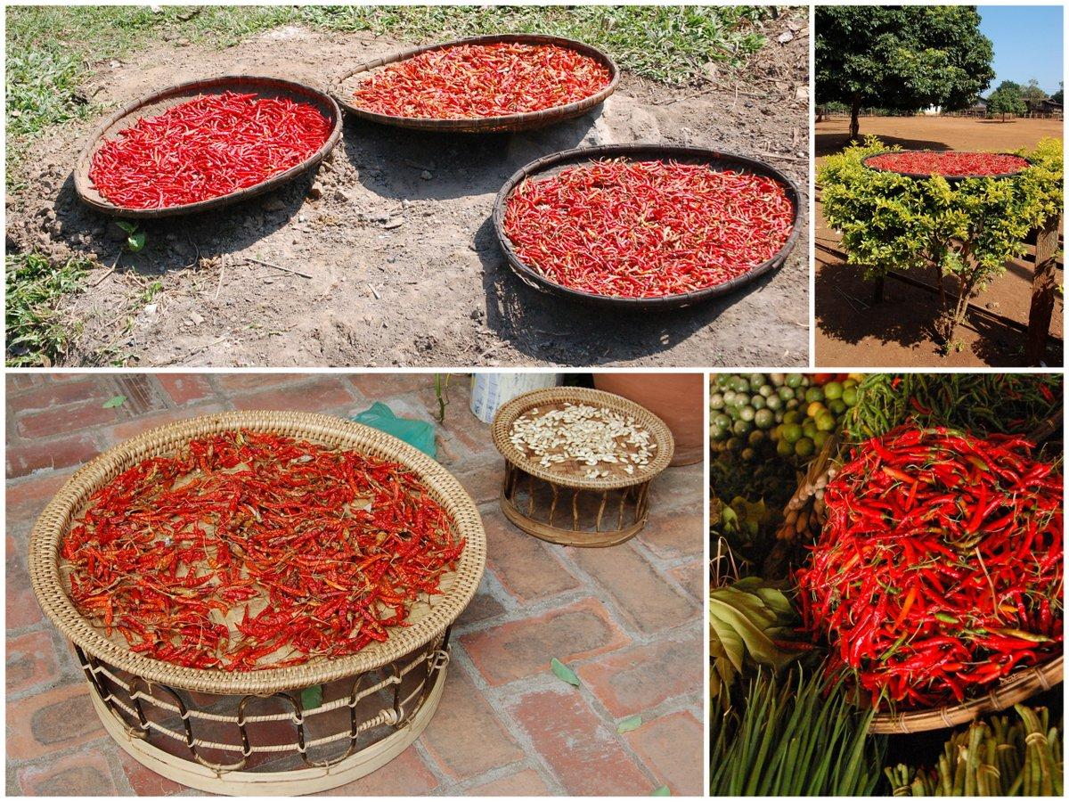 laos food3