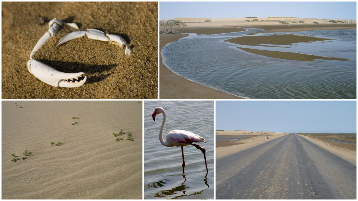 Search results for namibia