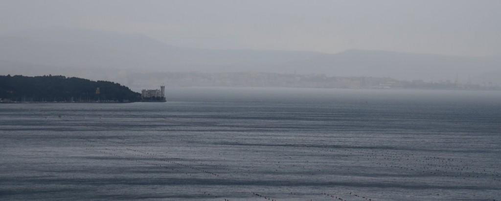 miramare castle from the coastal road