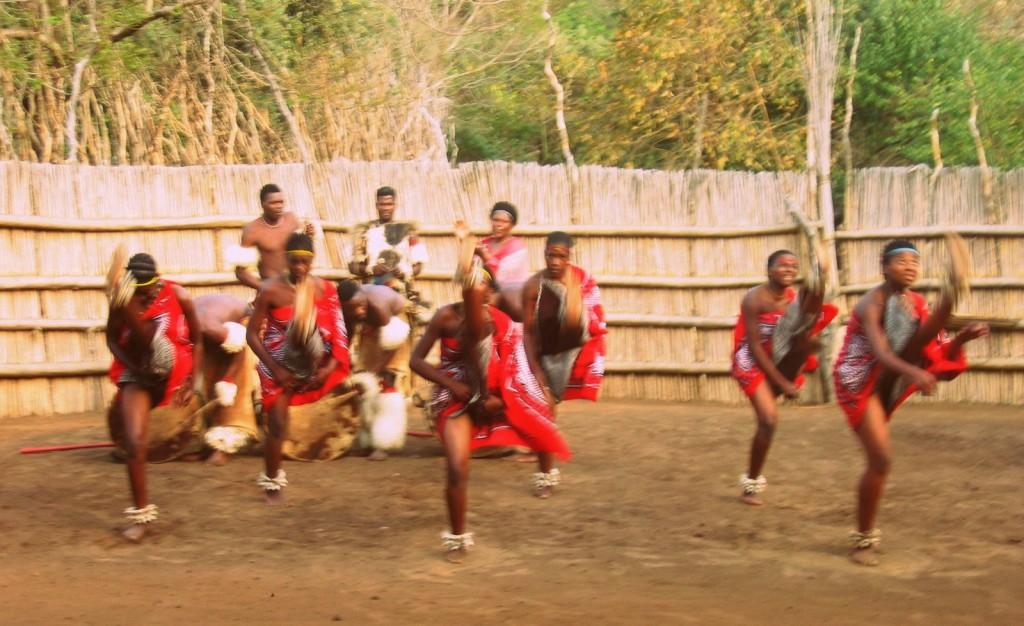 swaziland (5)