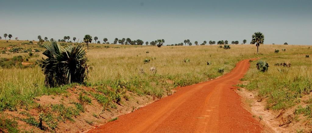 uganda murchinson 7