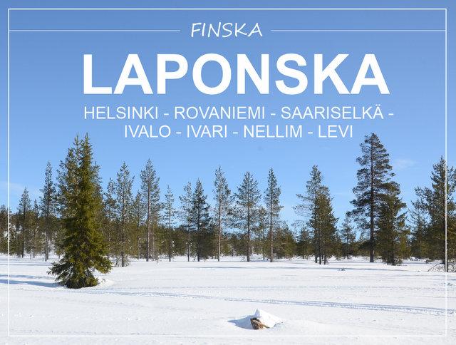 Zimski road trip potovanje Finska Laponska in Helsinki kaj videti in početi potopis