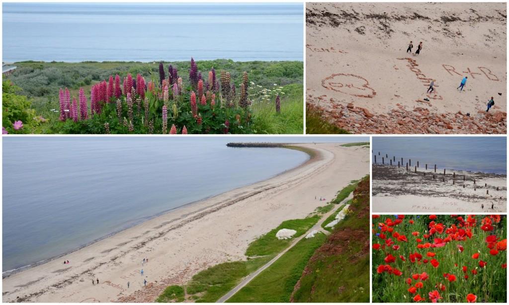 helgoland beach