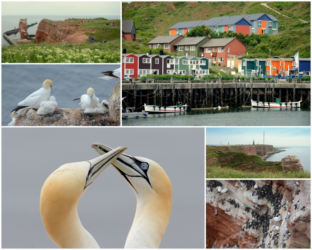 helgoland mix