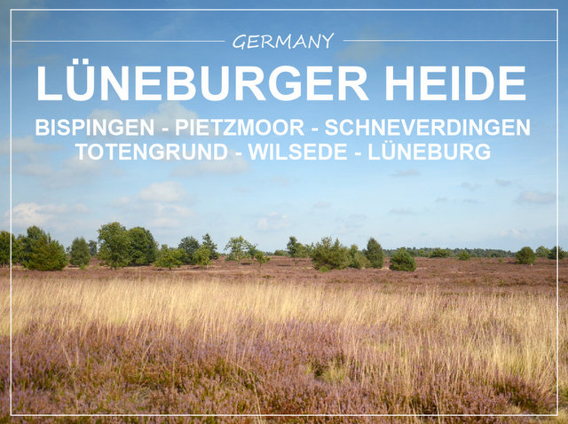 Lüneburger Heide Germany what to see and do