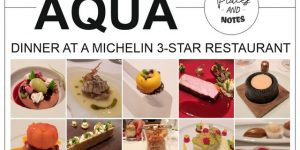 dinner at a Michelin 3 *** restaurant | AQUA, Wolfsburg, Germany
