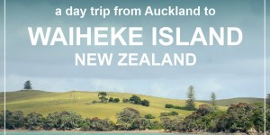 WAIHEKE ISLAND – a perfect day trip from Auckland