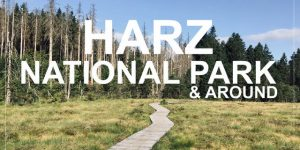 WHAT TO SEE AND DO IN HARZ NATIONAL PARK & AROUND, Germany   hiking, skiing, sightseeing and more