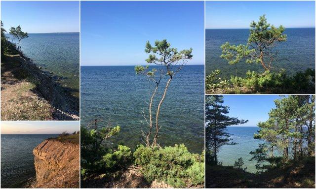 saaremaa island otok Estonia