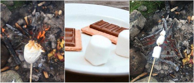 Vanlife kitchen kamp kuhinja smores marshmallows
