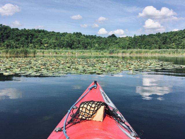 Gobenowsee Mecklenburgische Seenplatte kayaking trip Nemčija Germany