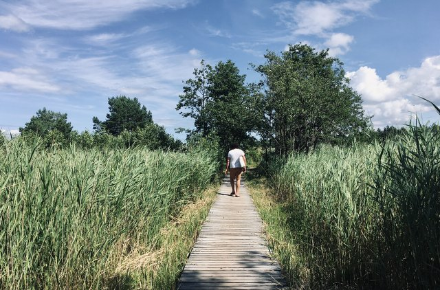 Darßer Ort Lighthouse svetilnik Prerow Vorpommersche Boddenlandschaft Germany Nemcija national park