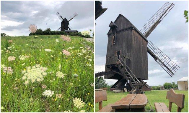 Pudagla windmill mlin na veter Germany Usedom island otok Nemcija