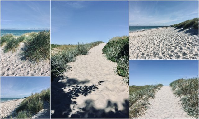 Weststrand Ahrenshoop Darß beach Germany Nemcija national park Vorpommersche Boddenlandschaft