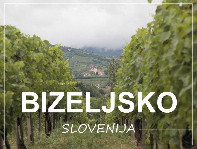 Kaj videti in početi na Bizeljskem Slovneija Posavje