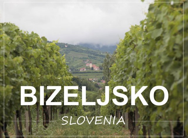 What to see and do in Bizeljsko Posavje Slovenia
