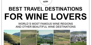 WINE JOURNEYS | best destinations for travellers & wine lovers