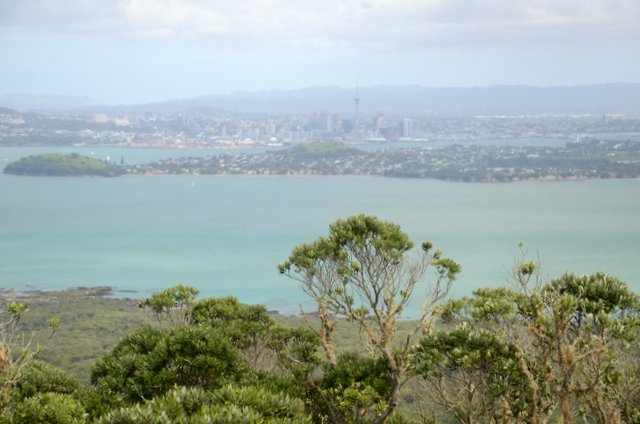 Rangitoto island day trip from Auckland New Zealand Nova zelandija izlet