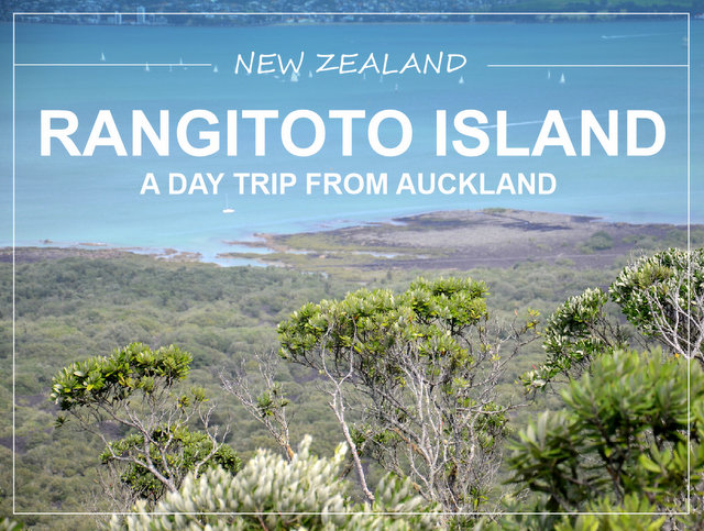 Rangitoto island New Zealand daytrip from Auckland