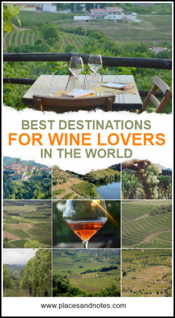 Best destinations for wine lovers in the world