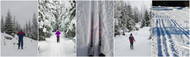 Cross country skiing Slovenia winter Slovenija tek na smučeh zimske aktivnosti
