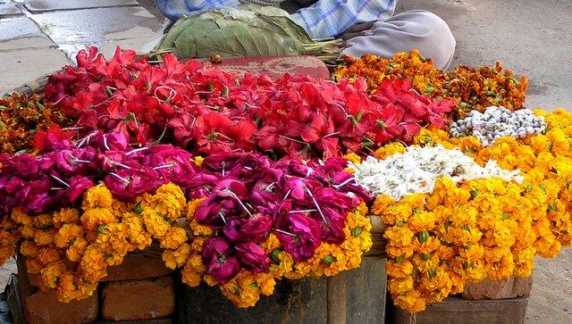 India flowers markets smell Indija cvetlice rože