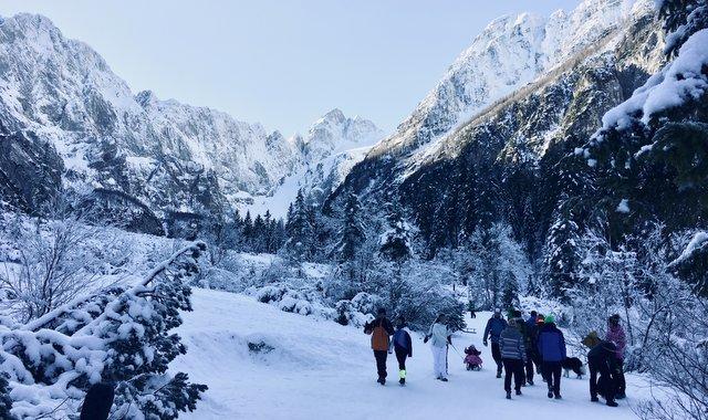 Najlepši lahki zimski pohodi v Sloveniji Tamar Kranjska Gora easy hikes in Slovenia winter time