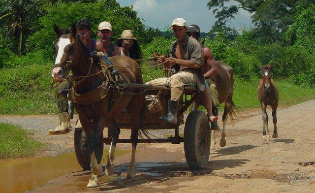 Topes de Collantes Cuba Kuba roads road trip potovanje